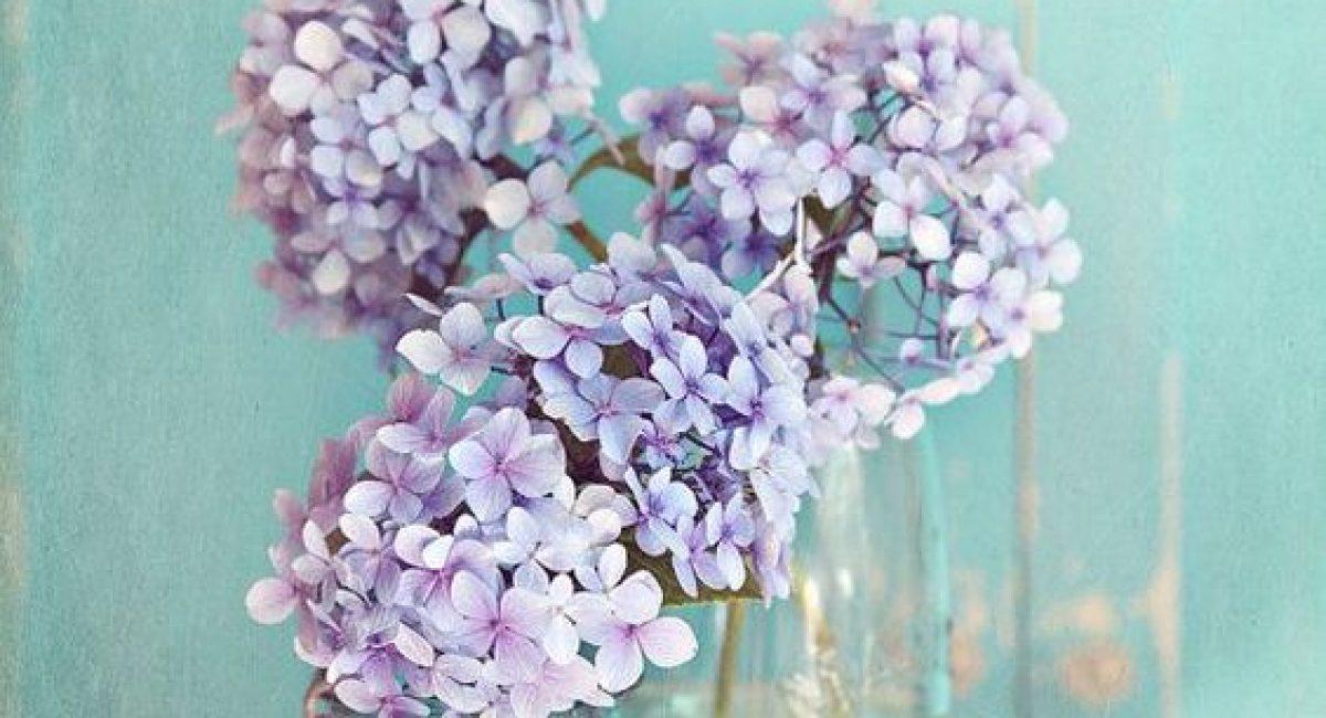 flores decoracion